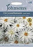 JOFL 英国ジョンソンズシード Chrysanthemum Crazy Daisy クリサンセマム・クレージー・デージー