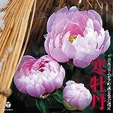 平成二十七年度(第五十一回) 日本コロムビア全国吟詠コンクール課題吟