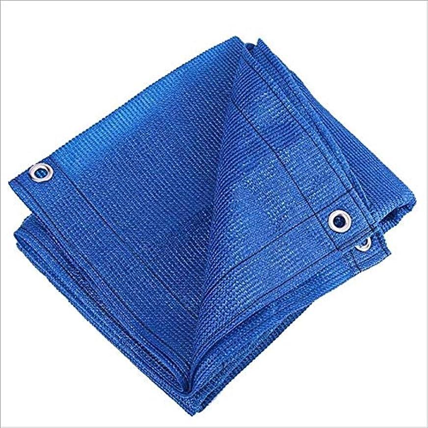バスケットボール同級生メイエラガーデンシェーディングネッティング - メタルアイレット付きシェードクロス日焼け止めシェードネット、アンチエイジング、パティオ、庭園の芝生、プール、バルコニー、温室、緑 ZHAOFENGMING (Color : Blue, Size : 1 x 3m)