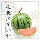尾花沢すいか 山形県尾花沢産 中玉(1玉約6kg)×1個入
