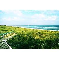 ボードウォークビーチ - #20339 - キャンバス印刷アートポスター 写真 部屋インテリア絵画 ポスター 50cmx33cm