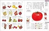もっとからだにおいしい野菜の便利帳 (便利帳シリーズ) 画像