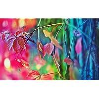 秋には、ファジーの葉 キャンバスの 写真 ポスター 印刷 旅行 風景 景色 - (105cmx70cm)