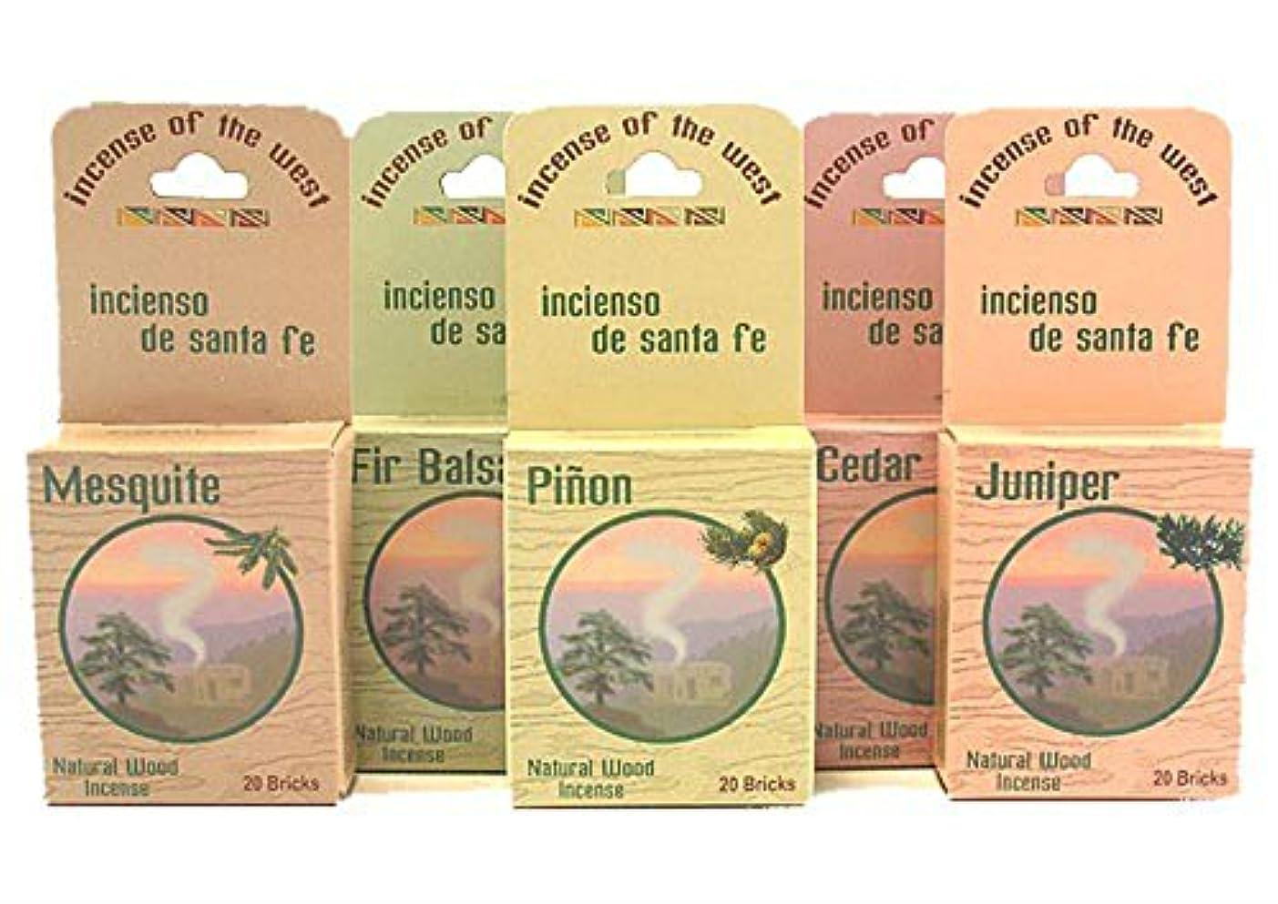 液体視力鈍いInciensio Sante Fe : Best Seller Assorted 100 Incenseレンガ