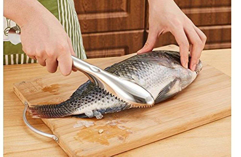 プレミアストライプ国民kc-sp096 Fastステンレススチール魚スケールScrapeリムーバーKillerキッチンシーフードツールby Advanced