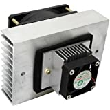 DC12V ペルチェ式 ポータブル 冷却 ユニット 完成品 保温庫 温冷庫