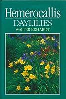 Hemerocallis: Daylilies