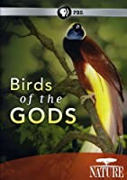 Nature: Birds of the Gods [DVD] [Import]
