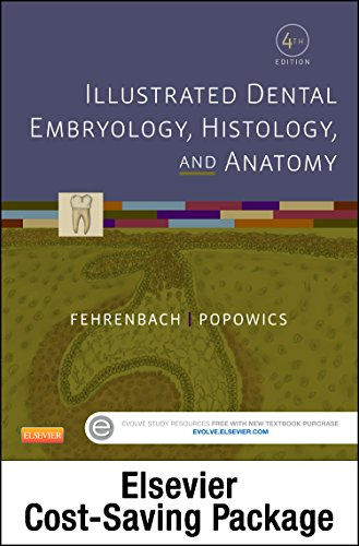 Download Illustrated Dental Embryology, Histology, and Anatomy - Text and Student Workbook Package, 4e 0323355994