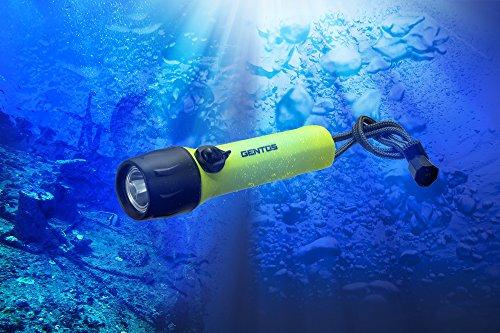 GENTOS(ジェントス) LED ダイビングライト 【明るさ200ルーメン/実用点灯8時間/防水】 SRシリーズ SR-220DT