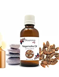 Nagarmotha Oil(Cyprus Scariosus) Essential Oil 30 ml or 1.0 Fl Oz by Blooming Alley