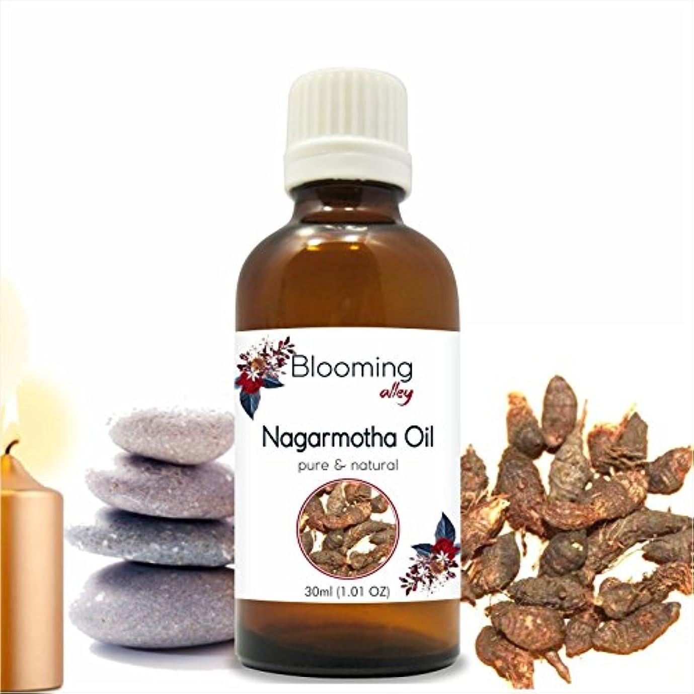 意志買い物に行く研磨剤Nagarmotha Oil(Cyprus Scariosus) Essential Oil 30 ml or 1.0 Fl Oz by Blooming Alley