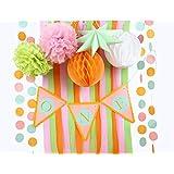 SUNBEAUTY 一歳 誕生日 飾り付け セット ペーパーフラワー ポンポン クレープ ガーランド キット 撮影写真背景 13点