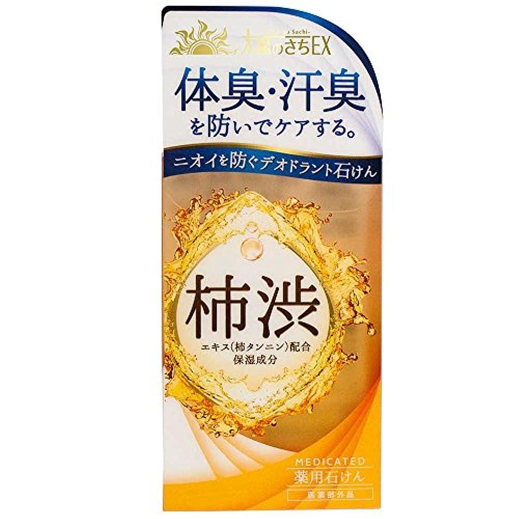 肺炎ピッチャー直面する薬用太陽のさちEX 柿渋石けん 120g