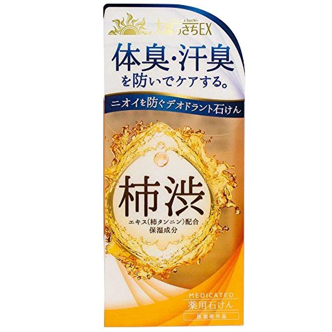 スカート調整する余剰薬用太陽のさちEX 柿渋石けん 120g