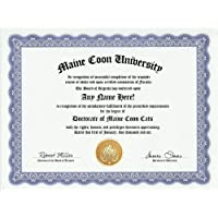 Maine Coon Cat Degree: Custom Gag Diploma Doctorate Certificate (Funny Customized Joke Gift - Novelty Item) by GD Novelty Items [並行輸入品]