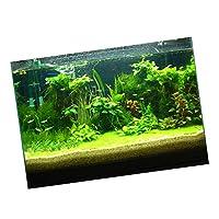 B Blesiya 装飾ステッカー ポスター PVC 3D効果 水族館 水槽背景 装飾 雰囲気を作り出し 全6サイズ - 61×30cm