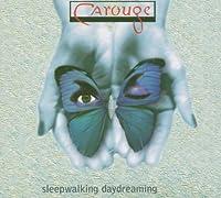 Sleepwalking Daydreaming