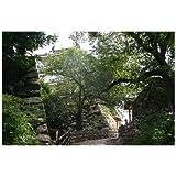 ポストカード「静岡県浜松城」絵はがきハガキ葉書
