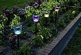 7色に光るチューリップガーデンライト 4本組 SL-10