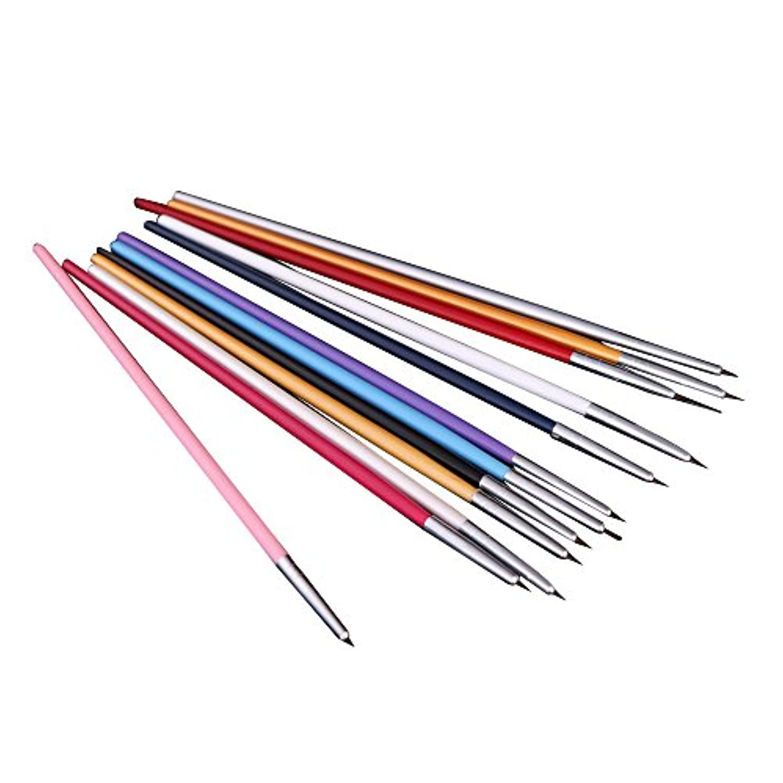 SODIAL(R) 12xペンとブラシ ネイルアートのため 研磨ネイルペインティングDIY 専門ツール