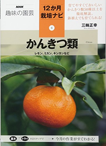 かんきつ類―レモン、ミカン、キンカンなど (NHK趣味の園芸12か月栽培ナビ(6))