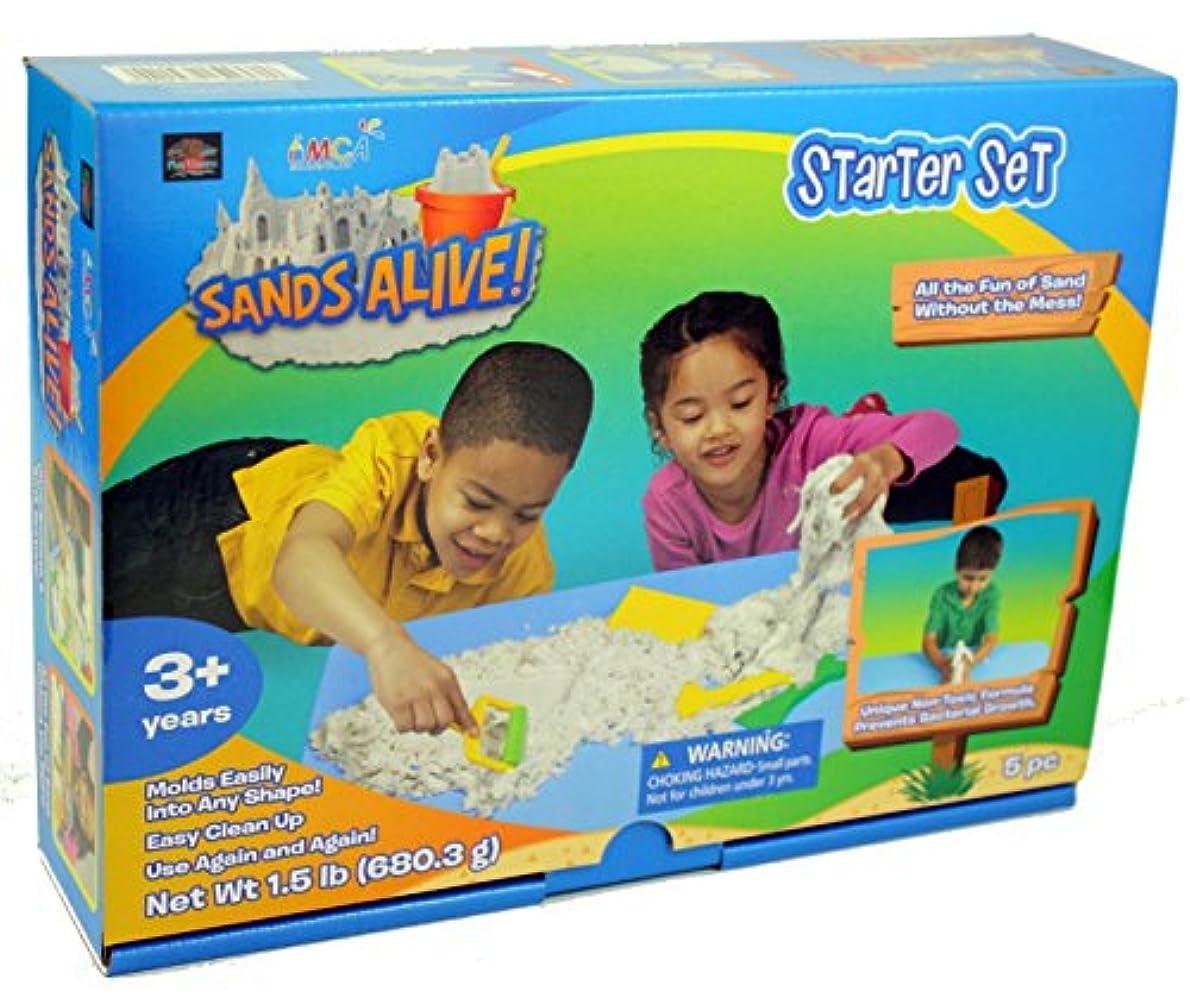 簿記係任命船上Sands Alive Starter Set