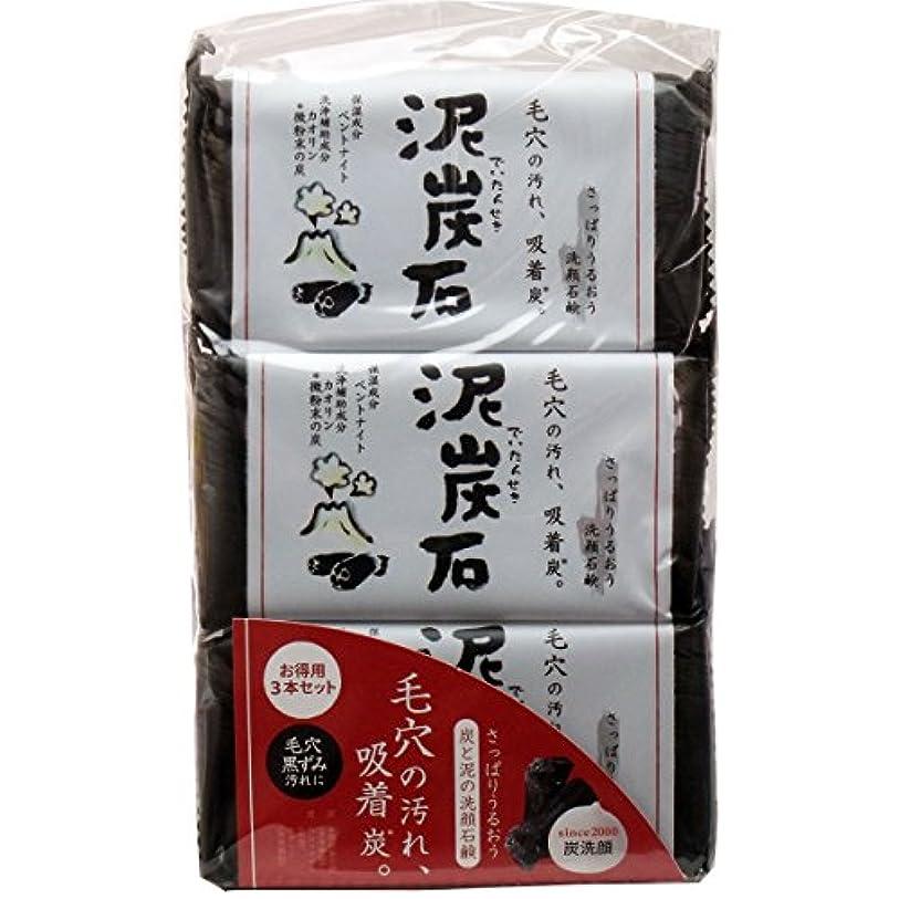 【セット品】ペリカン 泥炭石 110g*3個×5セット