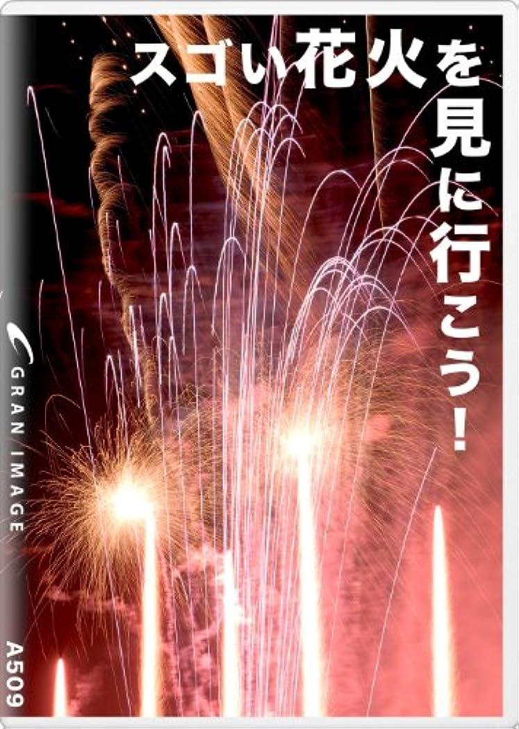 栄養場合リーグランイメージ A509 スゴい花火を見に行こう!(ロイヤリティフリー写真素材集)