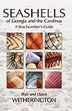 Seashells of Georgia and the Carolinas 画像