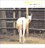 動物チラリズム―趣味は人間観察ですけど…?