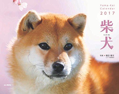 カレンダー2017 柴犬 (ヤマケイカレンダー2017)