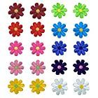 フェリモア アイロンワッペン 刺繍 アップリケ 花 装飾 フラワーモチーフ 全10色 20点セット