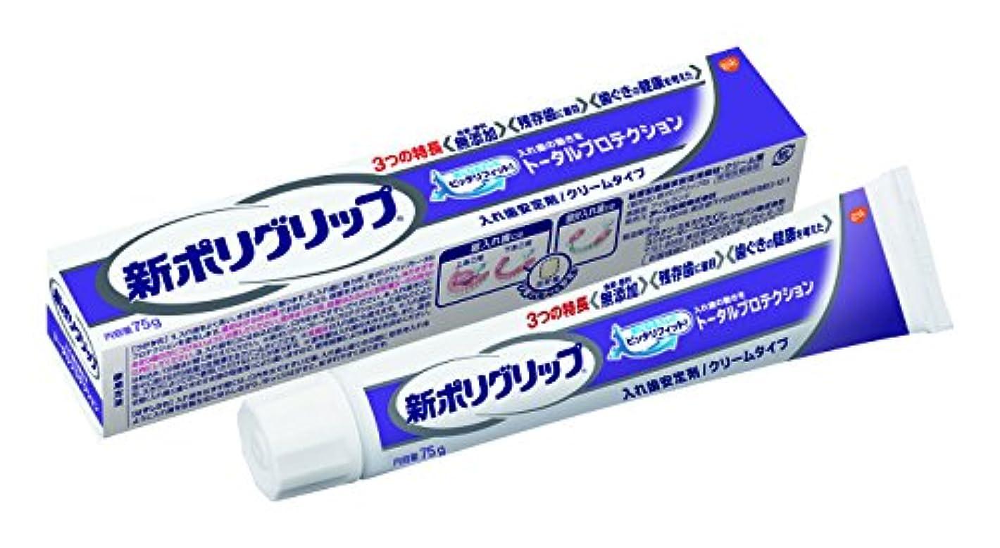 ドメインマウスチャンピオン部分?総入れ歯安定剤 新ポリグリップ トータルプロテクション(残存歯に着目) 75g