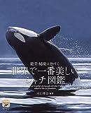 世界で一番美しい シャチ図鑑: 絶景・秘境に息づく