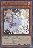遊戯王カード MACR-JP036 灰流うらら(スーパーレア)遊☆戯☆王ARC-V [マキシマム・クライシス]