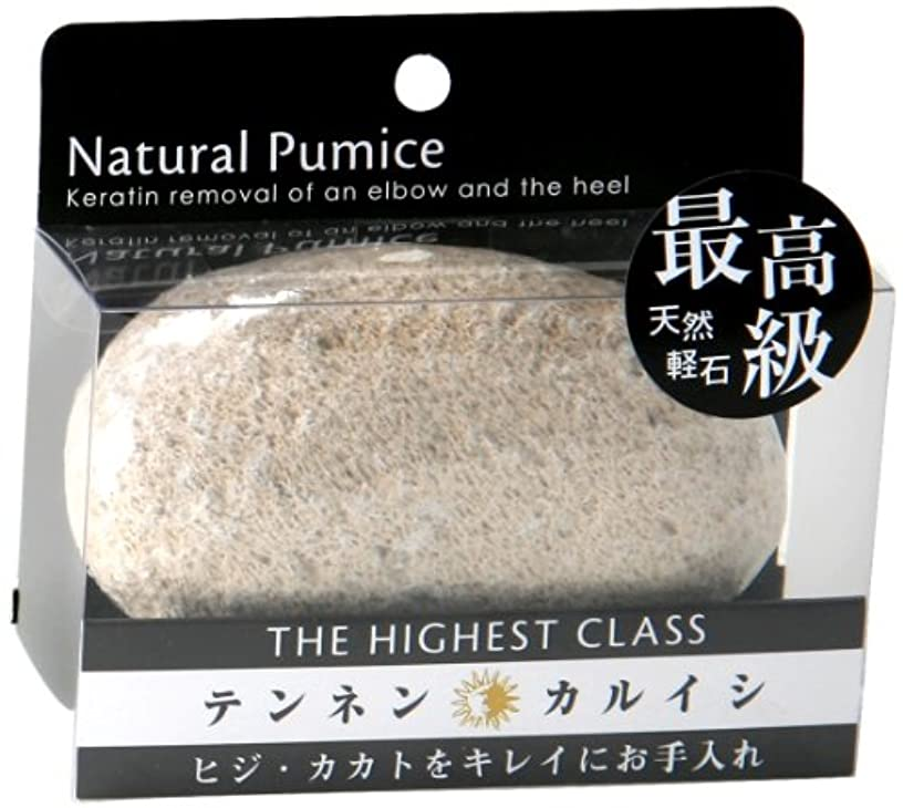 ブラシ卵撃退する日本興業 最高級 天然 軽石