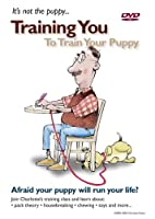 It's Not the Puppy.... Training You to Train Your Puppy