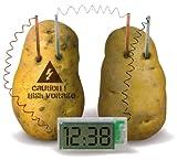電池なんていりません!水分のある野菜や果物に挿すだけで発電するエコクロック♪【ポテトクロック】アメリカン雑貨アメリカ雑貨