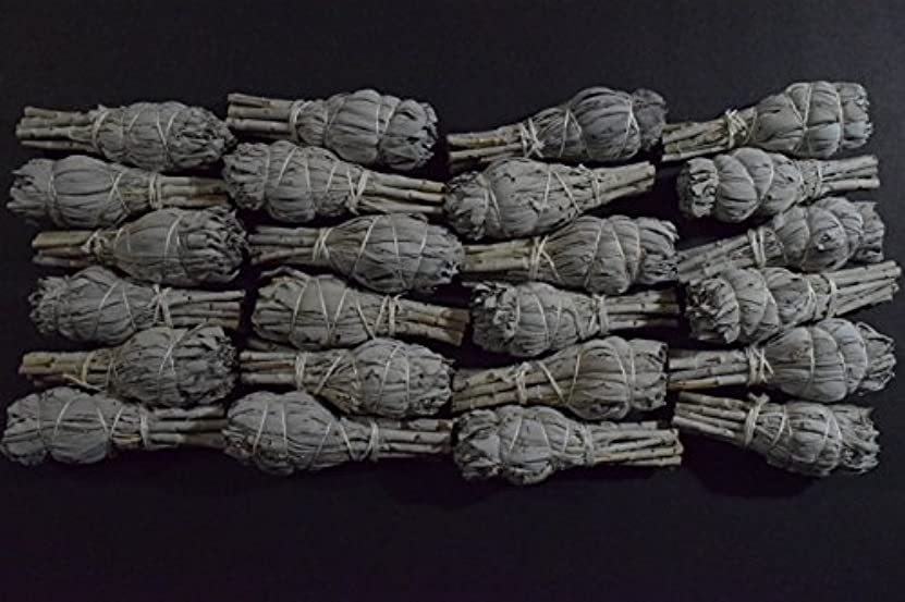 絶滅させる堂々たるうぬぼれたホワイトセージミニボール(24パック) SmudgeクレンジングNegativity Removal