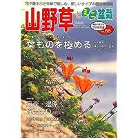 山野草とミニ盆栽 2008年 07月号 [雑誌]