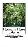Baeume: Betrachtungen und Gedichte