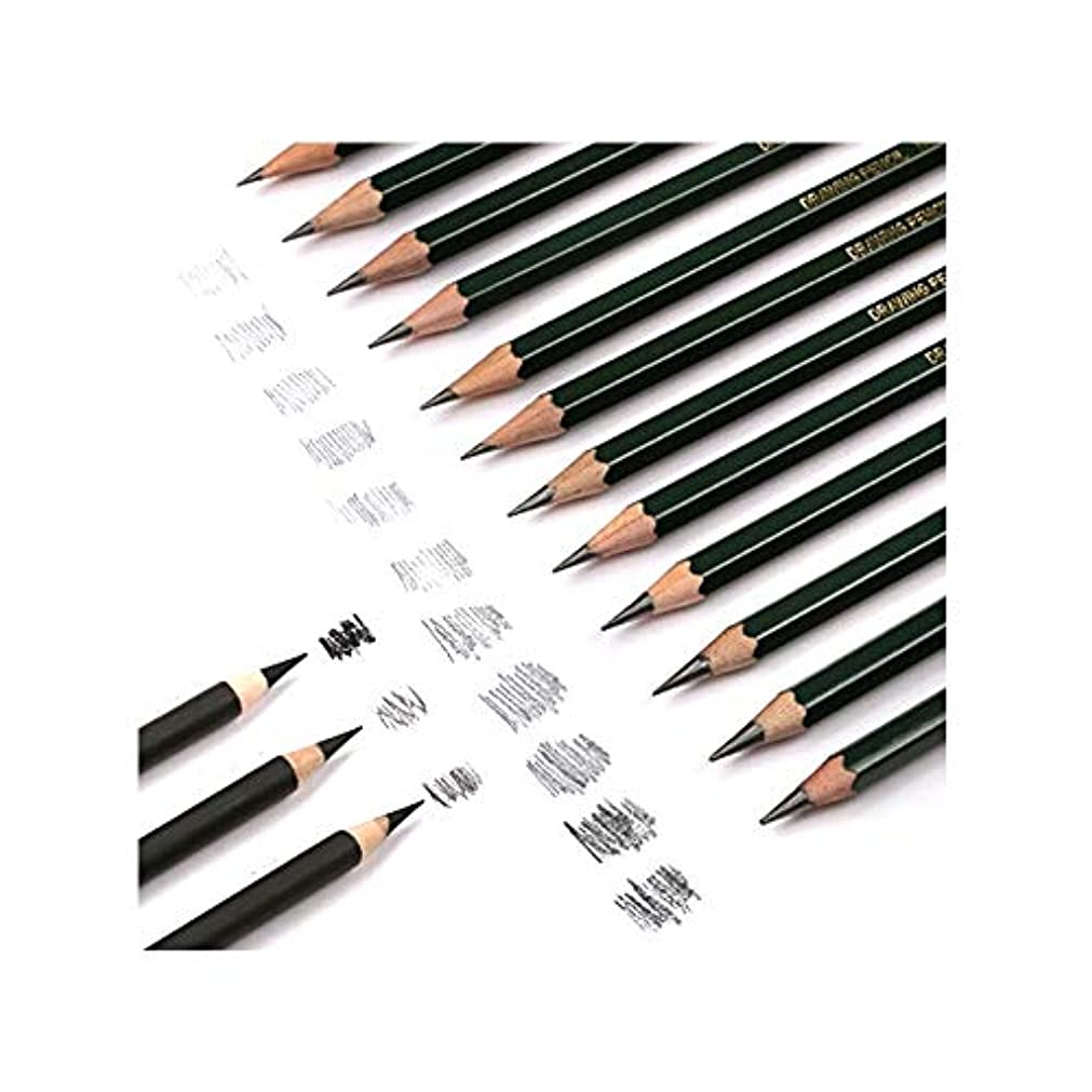 ガジュマルコック東Aishanghuayi001 ペイントブラシ、色が簡単な初心者向け画材、27枚の大人のプロのスケッチデッサン鉛筆(27枚) 安全と環境保護 (Color : Silver, Size : 7 pieceses)