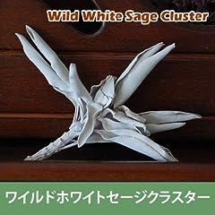 セドナのOMoROSEのワイルドホワイトセージ(無農薬栽培)クラスター20g