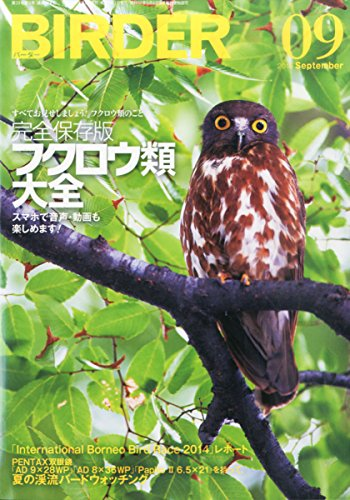 BIRDER(バーダー)2015年9月号 完全保存版「フクロウ類 大全」