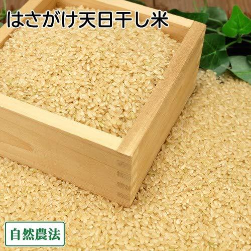 【令和元年度産】田口さんちのはさがけ天日干し米(つがる) 玄米 10kg 無農薬 (青森県 だんごっこファーム) 産地直送 ふるさと21