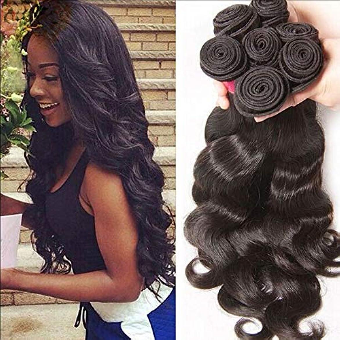 北へ登場別々にWASAIO 10「-24」)、ヘアエクステンションクリップUnseamed女性のボディウェーブ髪の1バンドル原油バージン人間ブラジルの髪(1つのバンドル (色 : 黒, サイズ : 10 inch)