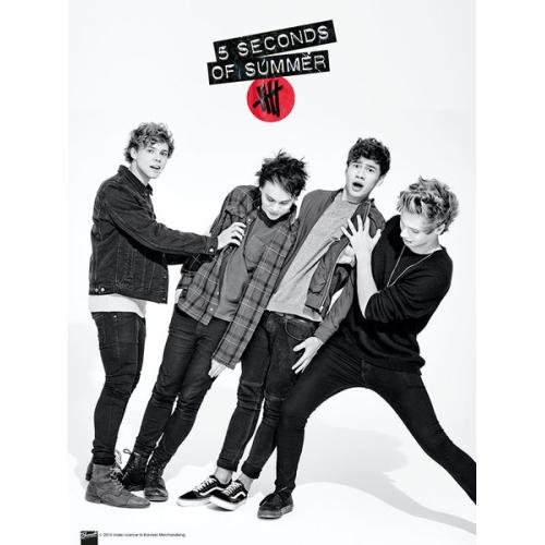 SUMMER SONIC 2017 出演 5 SECONDS OF SUMMER - 5SOS MICRO POSTER 3枚セット/ ポスター/ 【公式 / オフィシャル】 5 SECONDS OF SUMMER / JAMSHOPPING