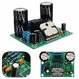 【ノーブランド品】TDA7293 デジタルオーディオ アンプボード モノ 単一チャネル AC 12-32v 100W