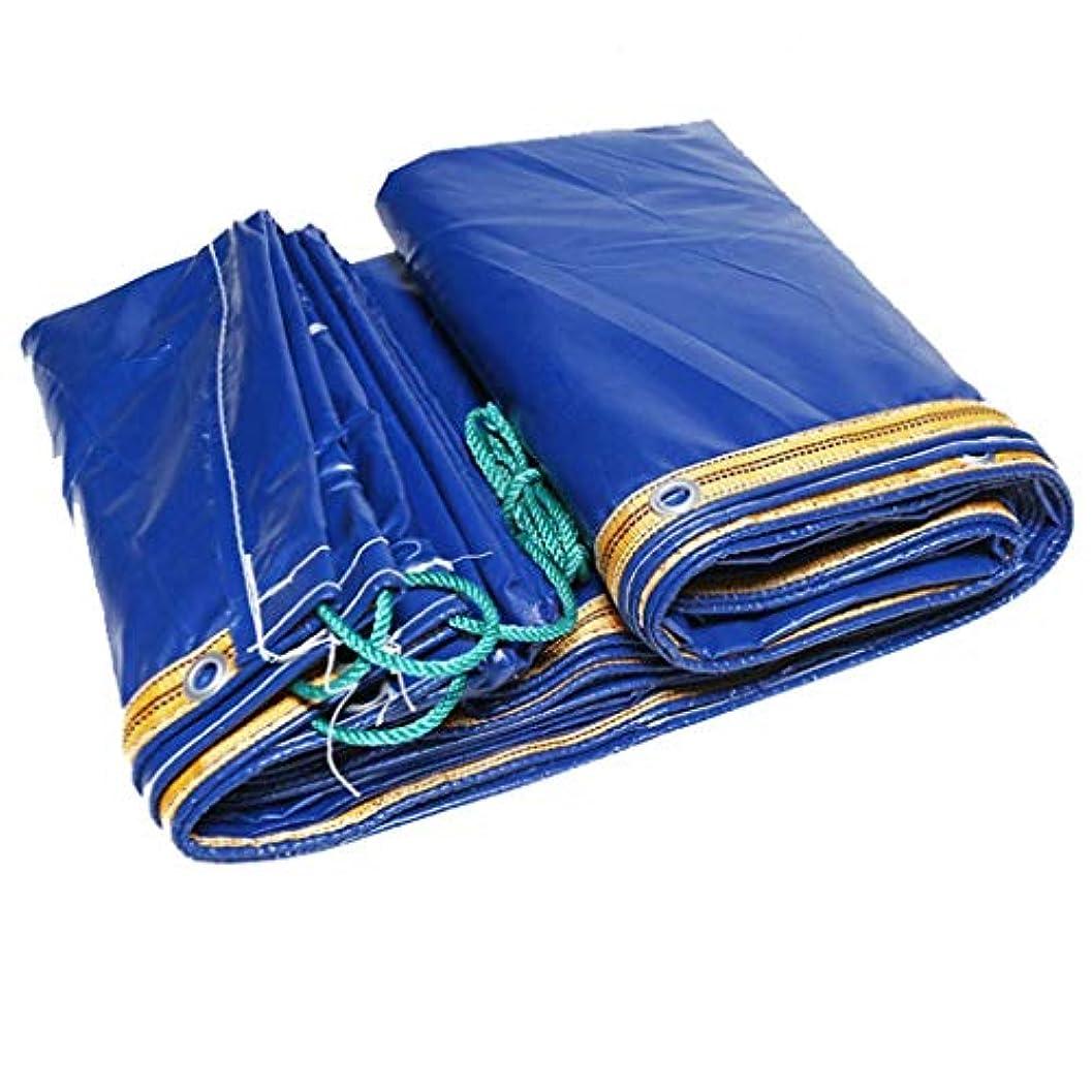 イサカバウンドスクラップトラックターポリンナイフ掻き布雨布ターポリンターポリンターポリン車日焼け止めターポリンバイザーキャンバス (Color : Blue, Size : 3x6m)